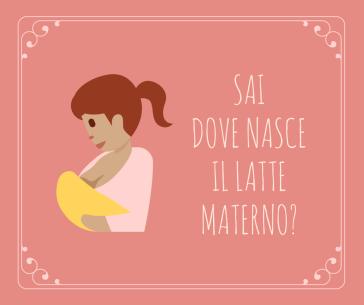 dove nasce il latte materno - piccoli e nuovi